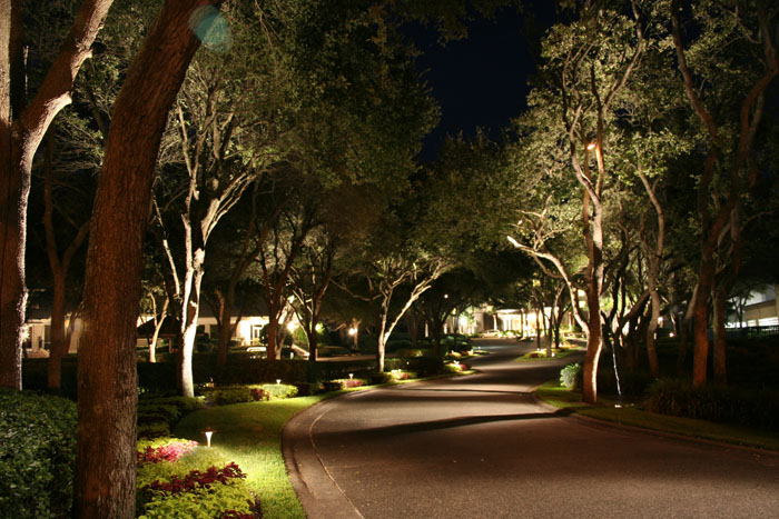frisco-landscaping-plano-light-down